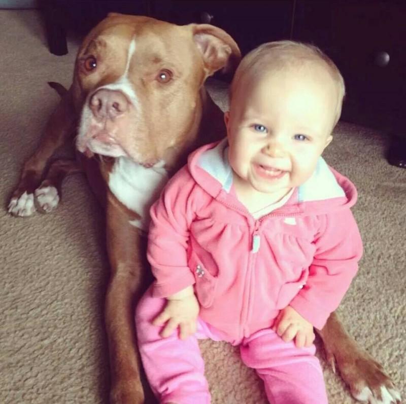 neném e cachorro